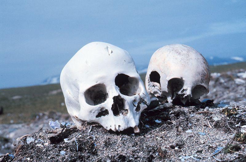 800px-Punuk_Alaska_skulls