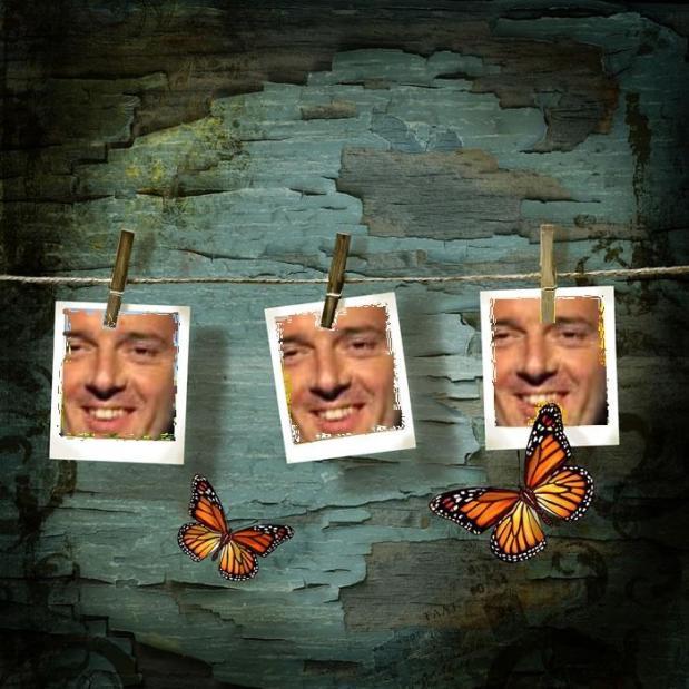 renzi farfalle