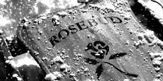rosebudcitizencane