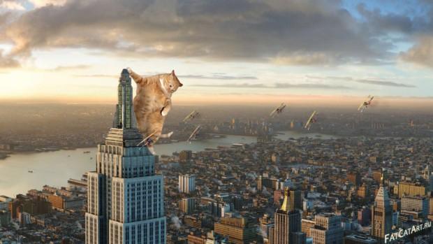 King-Kong-2005-cat-w-1024x578