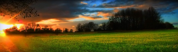sunset-field-header-7401