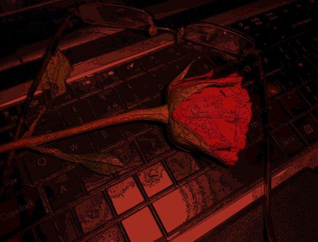 beautiful-rose-for-me