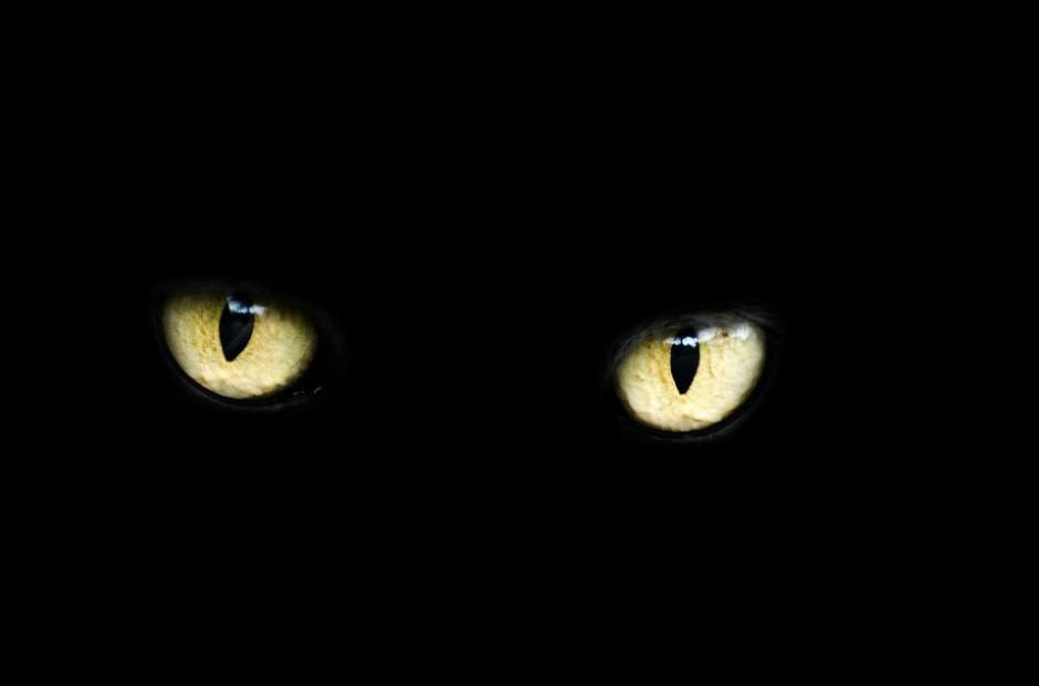 eyes-218185_960_720