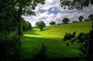 landscape-403165_960_720