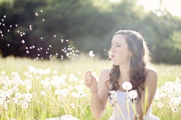 dandelions-609253_960_720