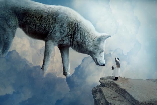 wolf-2082333_960_720