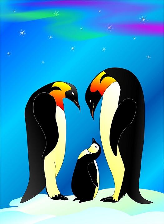 penguin-1897051_960_720