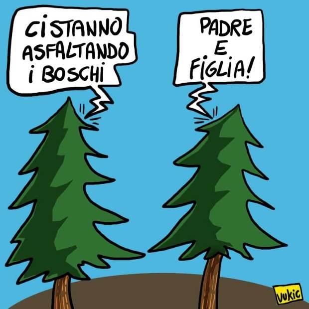 denuncia-ambientalista.jpg