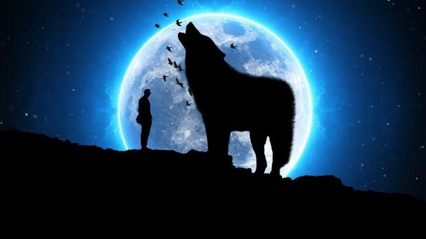 moon-3084692_960_720