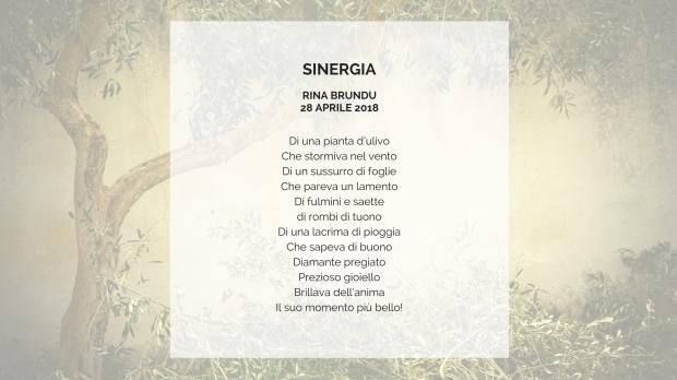 poesia sinergia.jpg