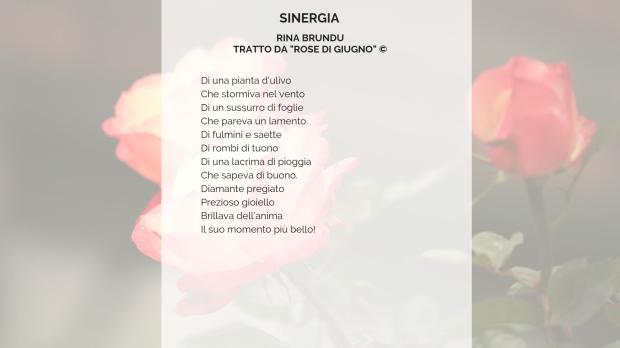 Rose di giugno di Rina Brundu (2).jpg