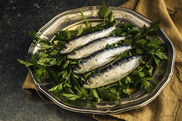 sardines-1468422_1920.jpg